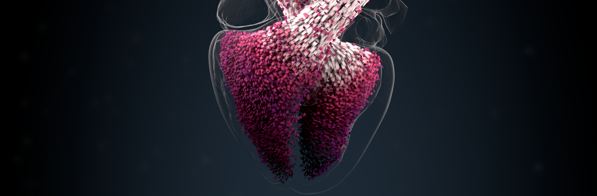 BSC and Medtronic: more cardiac simulations leading to less